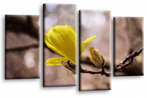 Floral Flower Wall Art Picture Grey Yellow Spring Print